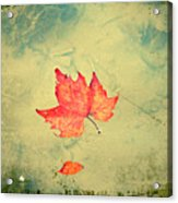 Leaf Upon The Water Acrylic Print by Bill Cannon