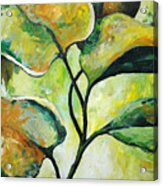 Leaves2 Acrylic Print by Chris Steinken