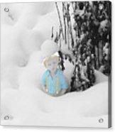 Let It Snow Acrylic Print by Al Bourassa
