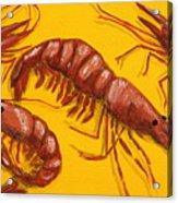 Lil Shrimp Acrylic Print by JoAnn Wheeler