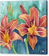 Lilies Acrylic Print by Eleonora Perlic