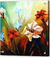 Lily In Bloom Acrylic Print by Uma Devi