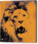 Lion Pop Art Acrylic Print by Angela Doelling AD DESIGN Photo and PhotoArt