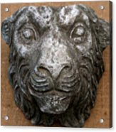 Lion Acrylic Print by Vladimir Kozma