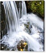 Little Elbow Waterfall Acrylic Print by Thomas R Fletcher