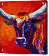 Longhorn Steer Acrylic Print by Marion Rose