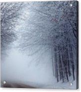 Lost Way Acrylic Print by Evgeni Dinev