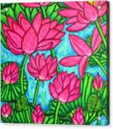 Lotus Bliss Acrylic Print by Lisa  Lorenz