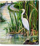 Louisiana Wetlands Acrylic Print by Elaine Hodges
