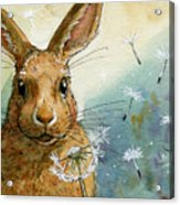 Lovely Rabbits - With Dandelions Acrylic Print by Svetlana Ledneva-Schukina