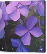 Lush Life Acrylic Print by Hunter Jay