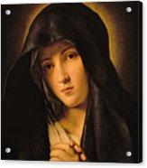 Madonna Acrylic Print by Il Sassoferrato