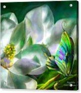 Magnolia Acrylic Print by Carol Cavalaris