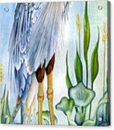 Majestic Blue Heron Acrylic Print by Lyse Anthony