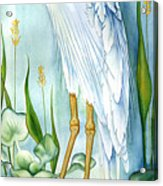 Majestic White Heron Acrylic Print by Lyse Anthony