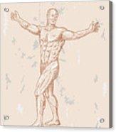 Male Human Anatomy Acrylic Print by Aloysius Patrimonio