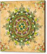 Mandala Flora Acrylic Print by Bedros Awak