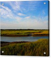 Marshland Charleston South Carolina Acrylic Print by Susanne Van Hulst