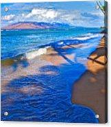Maui Palms Acrylic Print by James Roemmling