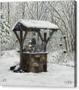 Mavis' Well Acrylic Print by Mary Ann King