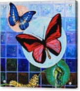 Metamorphosis Of The New Life Acrylic Print by John Lautermilch