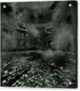 Midnight Ramblings Acrylic Print by Mimulux patricia no No