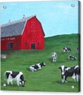 Milking Time Dairy Acrylic Print by Kerri Ertman