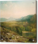 Minding The Flock Acrylic Print by Thomas Moran