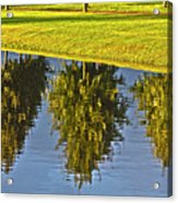 Mirroring Trees Acrylic Print by Heiko Koehrer-Wagner