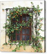 Mission Window With Yellow Flowers Acrylic Print by Carol Groenen