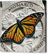 Monarch Acrylic Print by Ken Hall