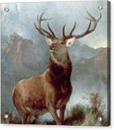 Monarch Of The Glen Acrylic Print by Sir Edwin Landseer