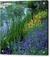 Monet's Lily Pond Acrylic Print by Kathy Yates