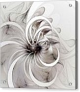 Monochrome Flower Acrylic Print by Amanda Moore
