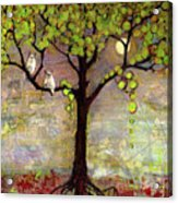 Moon River Tree Owls Art Acrylic Print by Blenda Studio