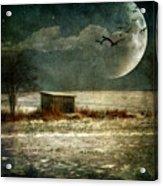 Moonstruck Acrylic Print by Lois Bryan