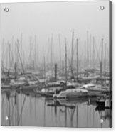 Morning Fog Acrylic Print by Terence Davis