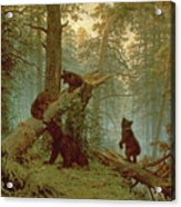Morning In A Pine Forest Acrylic Print by Ivan Ivanovich Shishkin
