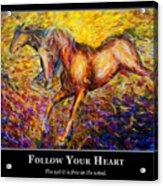 Motivational Horsea Acrylic Print by Nik Helbig