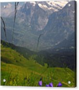 Mount Wetterhorn And The Grindelwald Acrylic Print by Anne Keiser