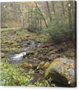 Mountain Stream Acrylic Print by Cindy and Dave Hicks
