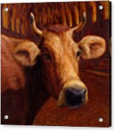 Mrs. O'leary's Cow Acrylic Print by James W Johnson