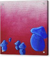 Mushroom Patch Acrylic Print by Jera Sky
