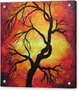 Mystic Firestorm Acrylic Print by Jordanka Yaretz