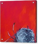 Nest On Red Acrylic Print by Tilly Strauss
