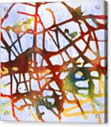 Neuron Acrylic Print by Mordecai Colodner