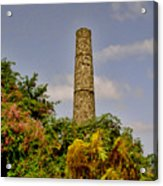 Nevis Sugar Mill II Acrylic Print by Louise Fahy