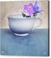 New Life For An Old Coffee Cup Acrylic Print by Priska Wettstein