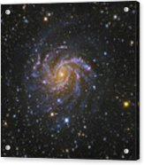 Ngc 6946, Also Known As The Fireworks Acrylic Print by Robert Gendler