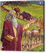 Noah's Ark Acrylic Print by Valer Ian